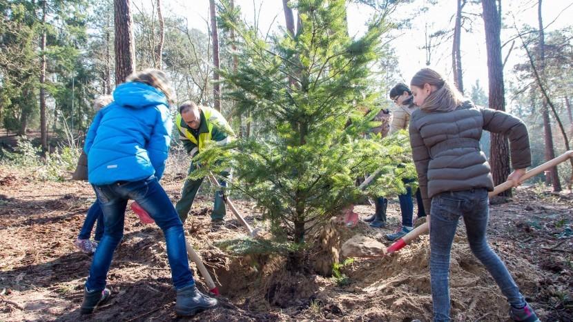 """Boomfeestdag: """"Van ieder kind een boom"""""""