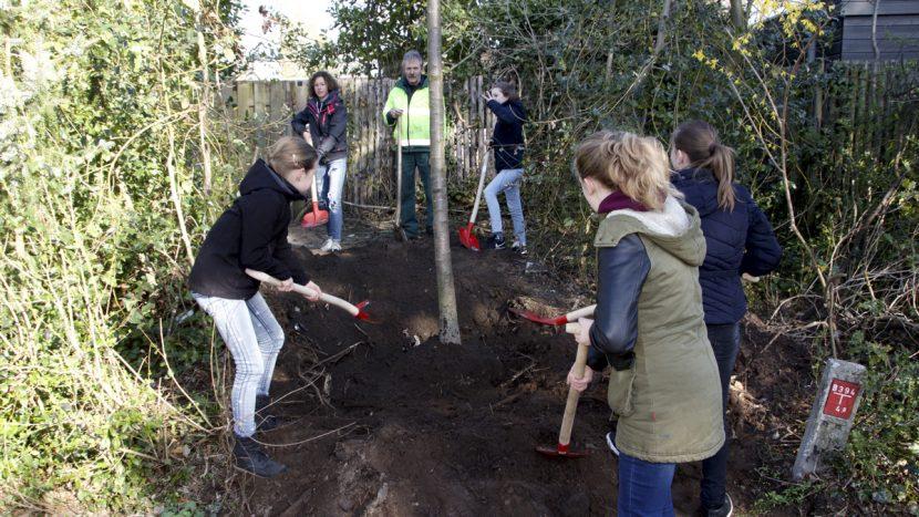 De Gentiaan krijgt bomen terug tijdens Nationale Boomfeestdag