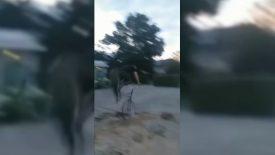 Flinke val op schoolplein de Krommen Hoek bij mislukte stunt