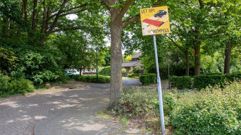 Drempel bij een fietspad in Breugel