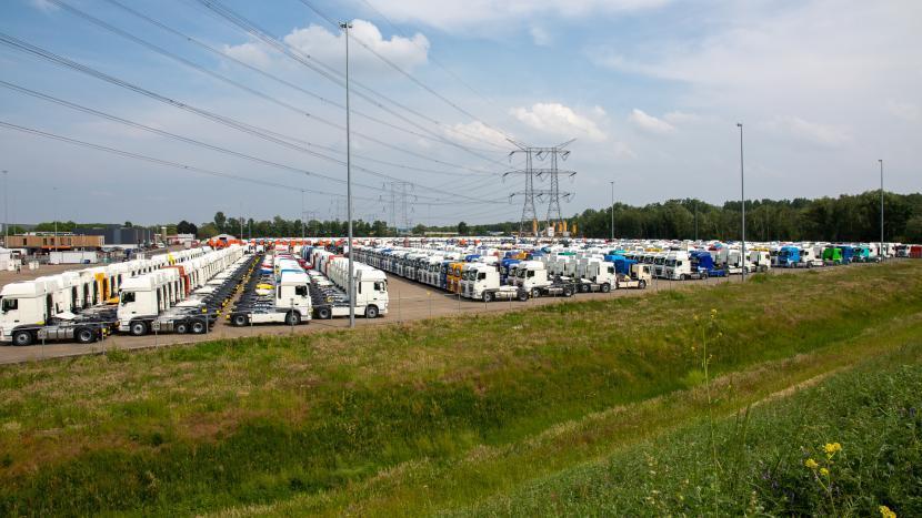 Het terrein van De Rooy op Ekkersrijt vol met DAF trucks