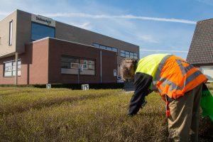 Emiliusschool wil investeren in duurzaamheid: 550 zonnepanelen en LED