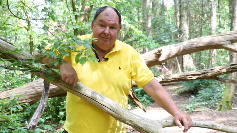 Peer Spooren tussen omgevallen bomen in de Sonse Bergen