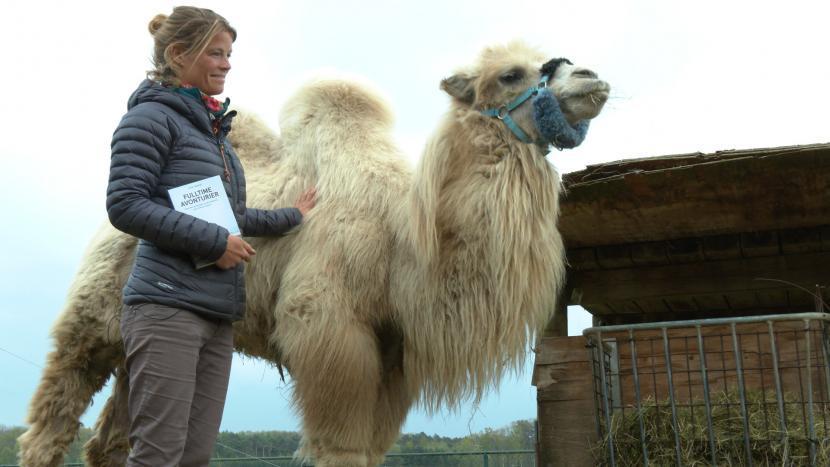Tamar Valkenier en kameel Einstein