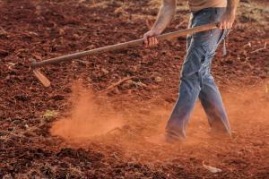 Arbeidsmigranten ploegen een veld om