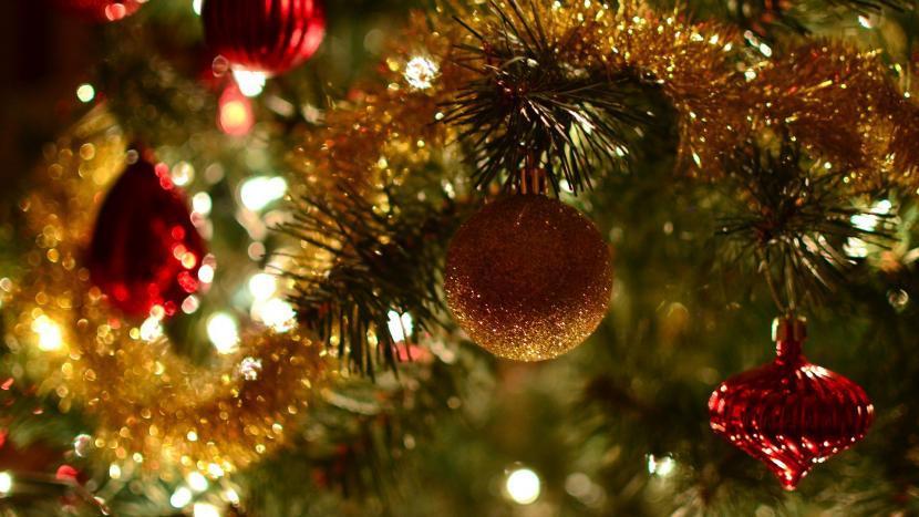 Let op: zet vandaag je kerstboom aan de straat