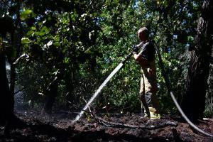 Brandweer rukt met groot materieel uit voor bosbrand op de Kuilen