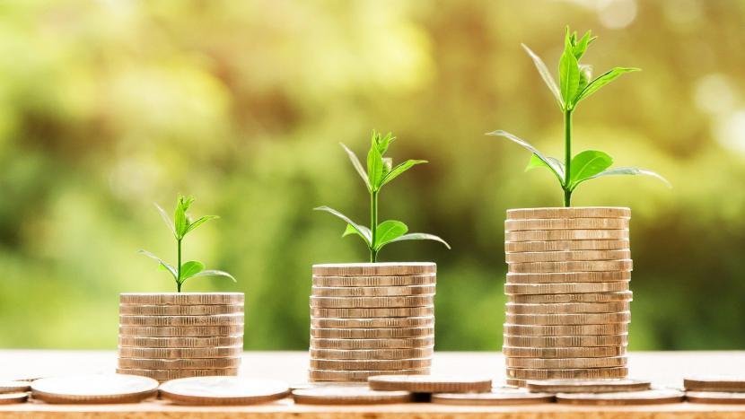 Drie stapels muntgeld waar een plantje uit groeit