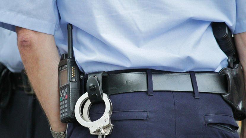 politie misdaadmeter inbraak diefstal pallaspad 2 ton