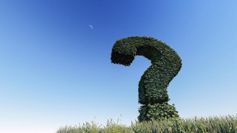 Vraagteken gemaakt van planten