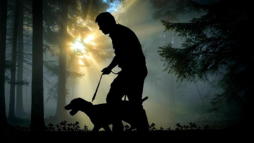 Een silhouette van een man met hond in donkere bossen
